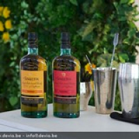 """The Singleton Sunray & Tailfire ready to use in a Cocktail • <a style=""""font-size:0.8em;"""" href=""""http://www.flickr.com/photos/21531446@N05/14430138846/"""" target=""""_blank"""">View on Flickr</a>"""