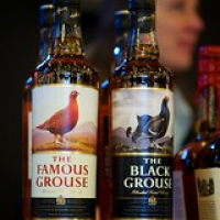 "The Famous Grouse & The Black Grouse • <a style=""font-size:0.8em;"" href=""http://www.flickr.com/photos/21531446@N05/13070909094/"" target=""_blank"">View on Flickr</a>"